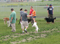 Ankeny Dog Park_summer 2011_for web