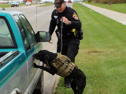 officer k-9 working vehicle inspection