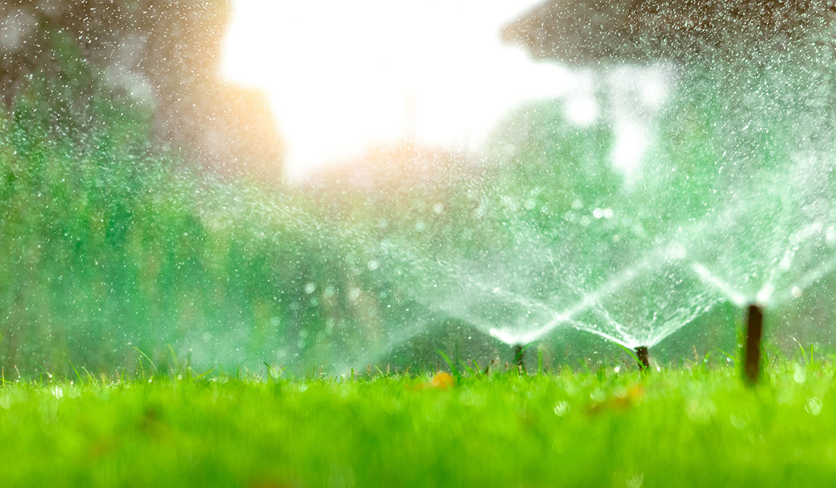 sprinklers in grass
